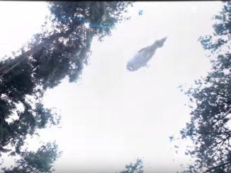 頭上を見ると宇宙船が引き上げていく